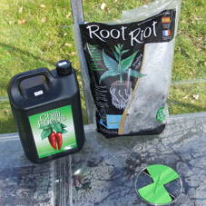 Root Riot Cubes & Chilli Focus